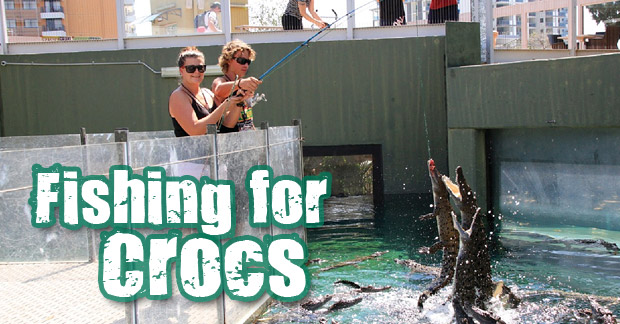 fishing-for-crocs